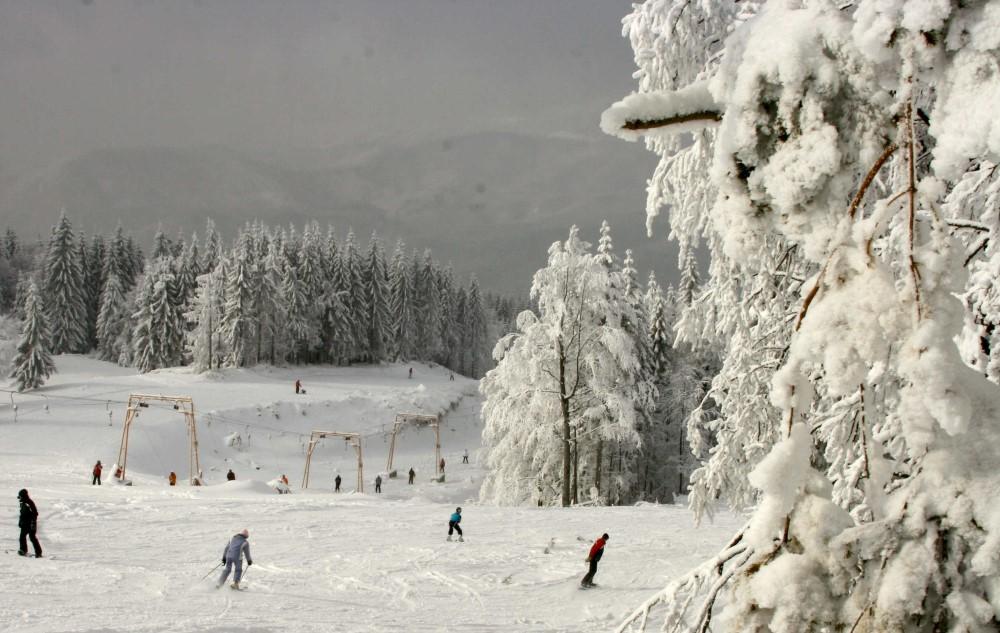 partii schi maramures